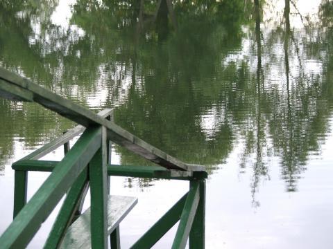 Лестница на пруду