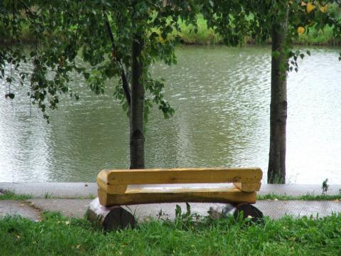 Лавка у пруда в парке в Софрино