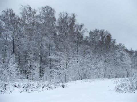 Зимний пейзаж поздней осенью