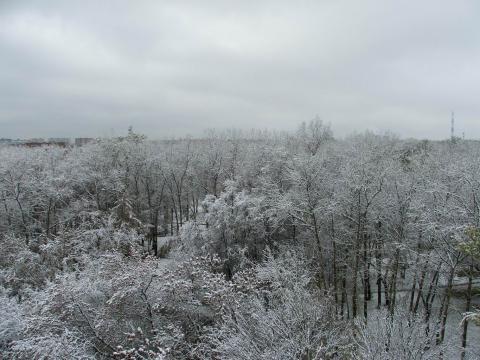После закончившегося снегопада
