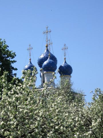 Церковь в Коломенском с яблонями на переднем плане